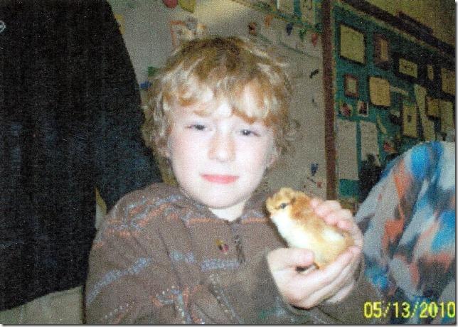 Finn-chick-2010