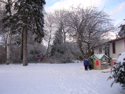 icestorm06-1.jpg