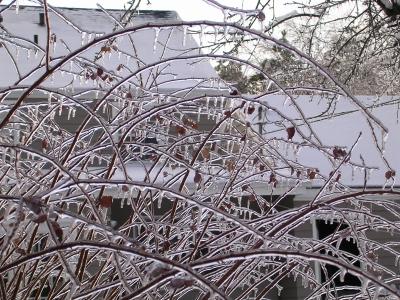 icestorm06-6.jpg